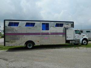 8 Horse Van Body with Corrugated Sheeting